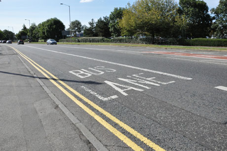 Bus _Lane _Road _Markings